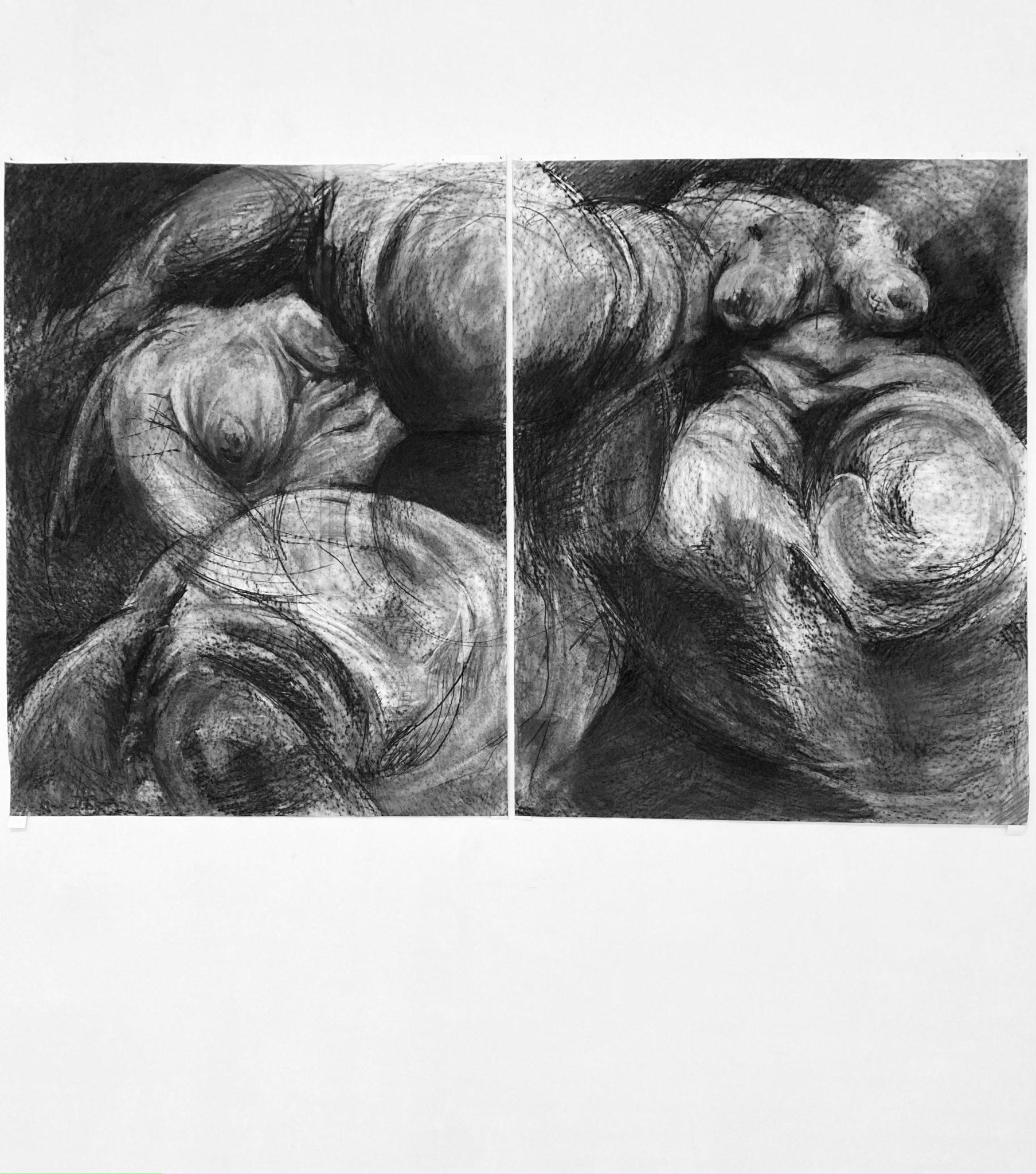 Mascha-Schultz_o.T._Kohle-auf-Papier_-187-x-288cm_2021